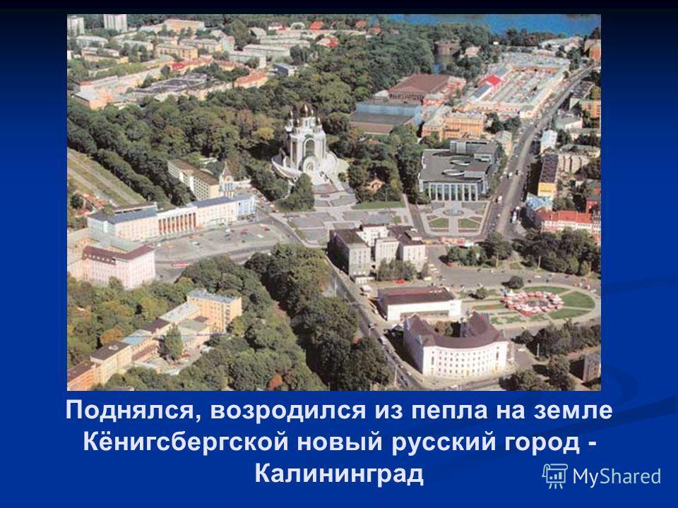 Поднялся, возродился из пепла на земле Кёнигсбергской новый русский город - Калининград