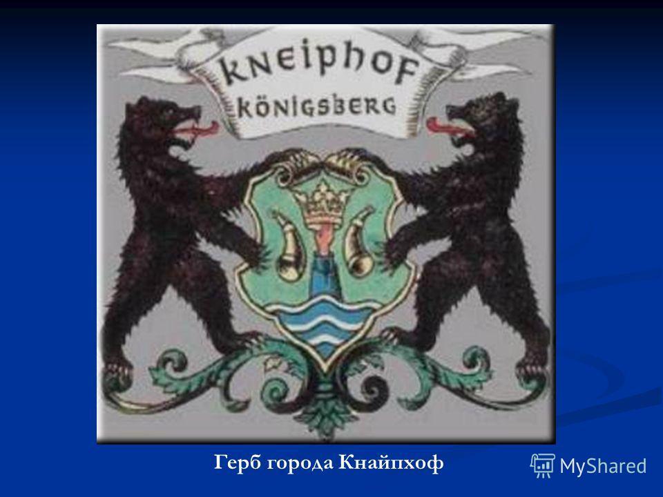 Герб города Кнайпхоф