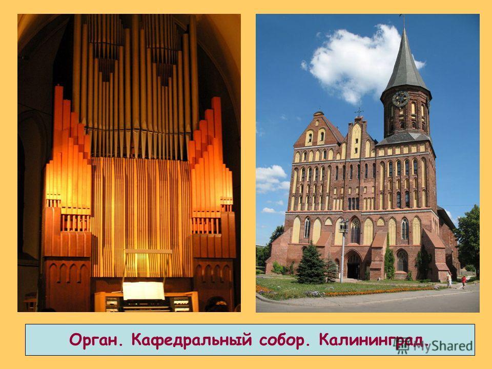 Орган. Кафедральный собор. Калининград.
