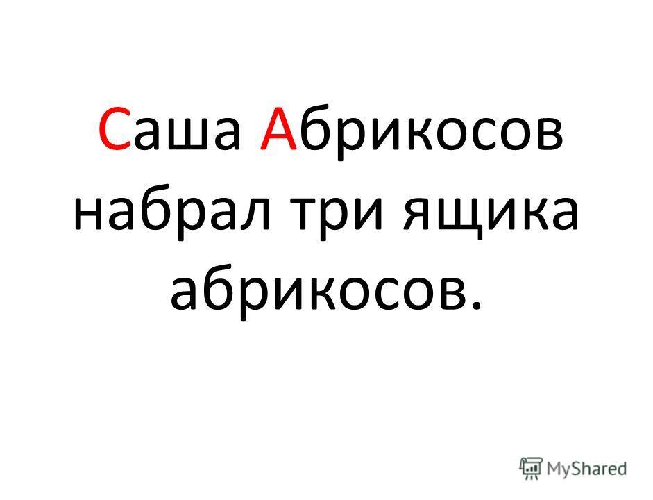 Саша Абрикосов набрал три ящика абрикосов.