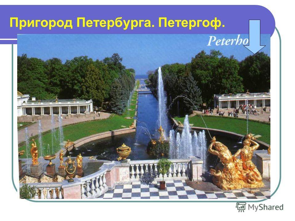 Пригород Петербурга. Петергоф.