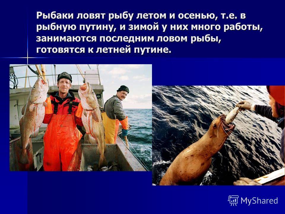 Рыбаки ловят рыбу летом и осенью, т.е. в рыбную путину, и зимой у них много работы, занимаются последним ловом рыбы, готовятся к летней путине.