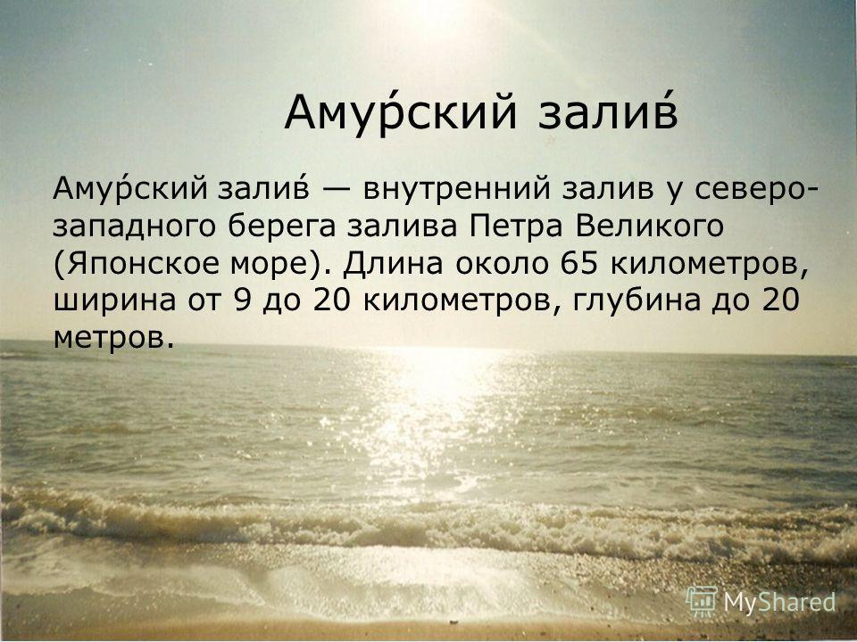 Аму́рский зали́в Аму́рский зали́в внутренний залив у северо- западного берега залива Петра Великого (Японское море). Длина около 65 километров, ширина от 9 до 20 километров, глубина до 20 метров.