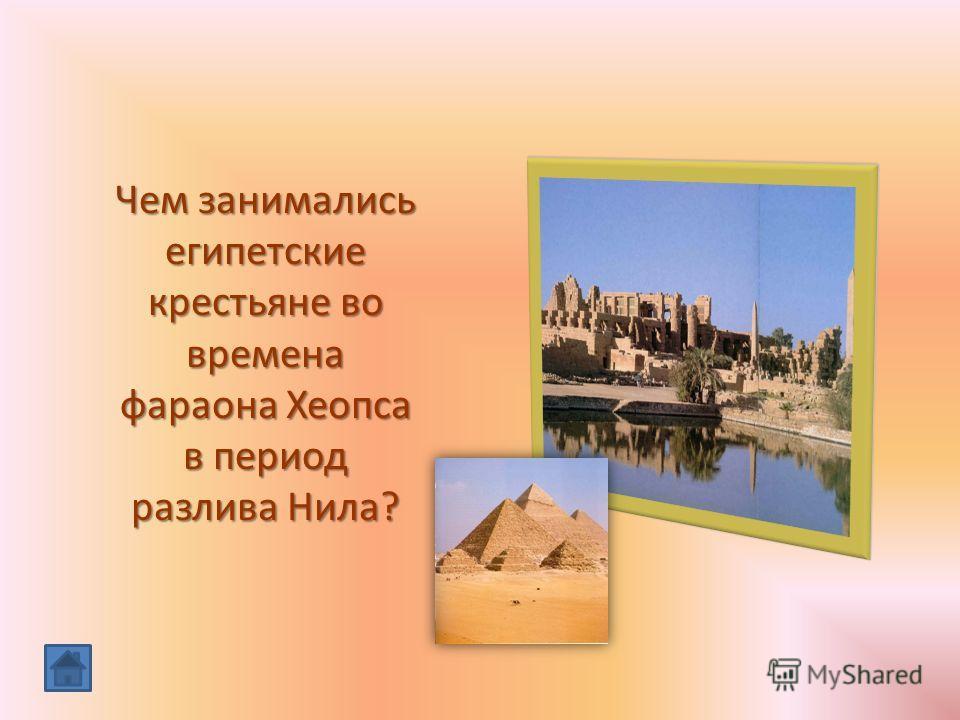 Чем занимались египетские крестьяне во времена фараона Хеопса в период разлива Нила?