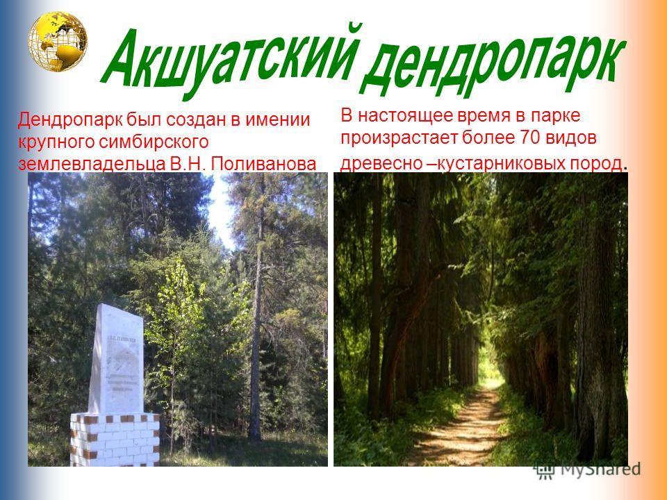 Дендропарк был создан в имении крупного симбирского землевладельца В.Н. Поливанова В настоящее время в парке произрастает более 70 видов древесно –кустарниковых пород.