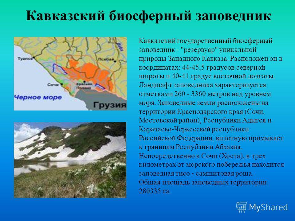 Кавказский государственный биосферный заповедник -