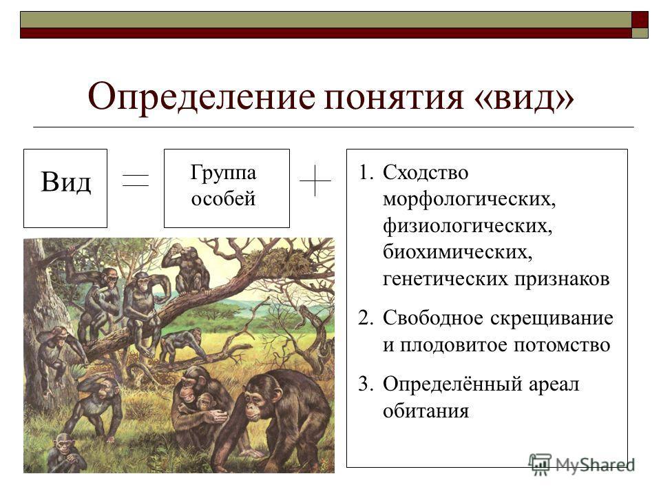 Определение понятия «вид» Вид Группа особей 1.Сходство морфологических, физиологических, биохимических, генетических признаков 2.Свободное скрещивание и плодовитое потомство 3.Определённый ареал обитания