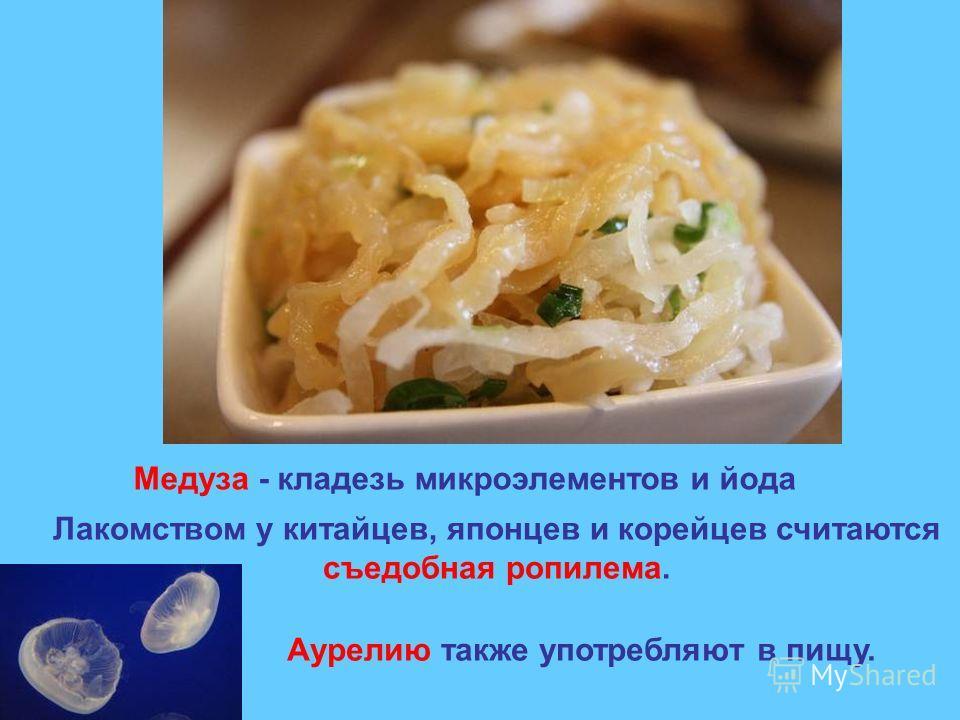 Медуза - кладезь микроэлементов и йода Лакомством у китайцев, японцев и корейцев считаются съедобная ропилема. Аурелию также употребляют в пищу.