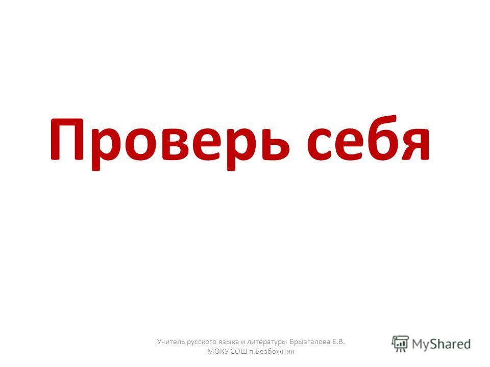 Проверь себя Учитель русского языка и литературы Брызгалова Е.В. МОКУ СОШ п.Безбожник