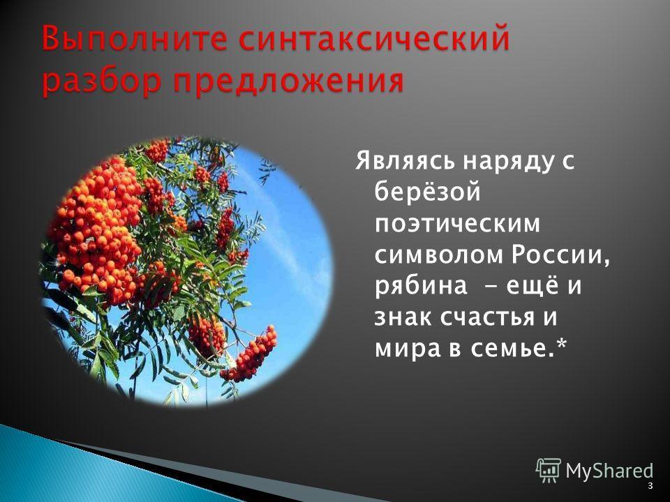 Являясь наряду с берёзой поэтическим символом России, рябина - ещё и знак счастья и мира в семье.* 3