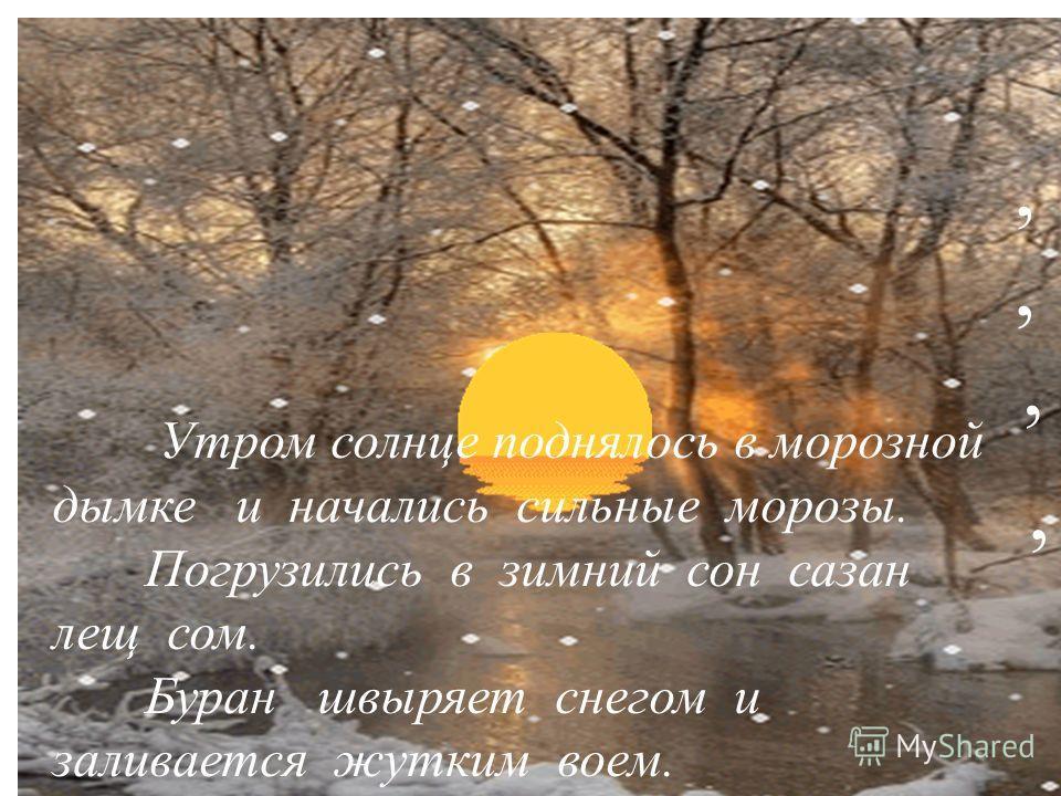 Утром солнце поднялось в морозной дымке и начались сильные морозы. Погрузились в зимний сон сазан лещ сом. Буран швыряет снегом и заливается жутким воем.,,,,