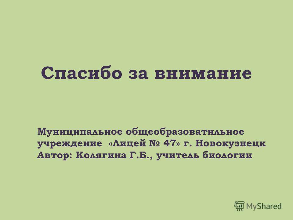 Спасибо за внимание Муниципальное общеобразоватнльное учреждение «Лицей 47» г. Новокузнецк Автор: Колягина Г.Б., учитель биологии