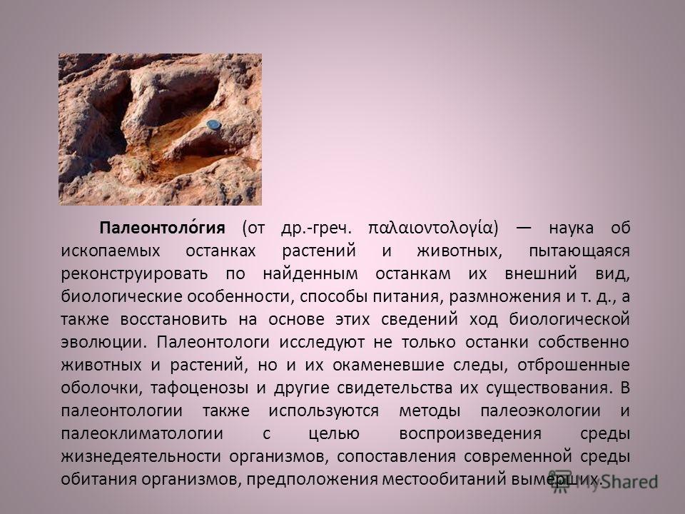 Палеонтоло́гия (от др.-греч. παλαιοντολογία) наука об ископаемых останках растений и животных, пытающаяся реконструировать по найденным останкам их внешний вид, биологические особенности, способы питания, размножения и т. д., а также восстановить на