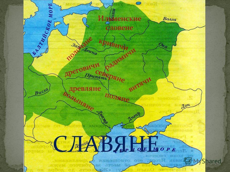 поляне дреговичи древляне кривичи витячи волыняне северяне полочане радимичи Ильменские словене СЛАВЯНЕ