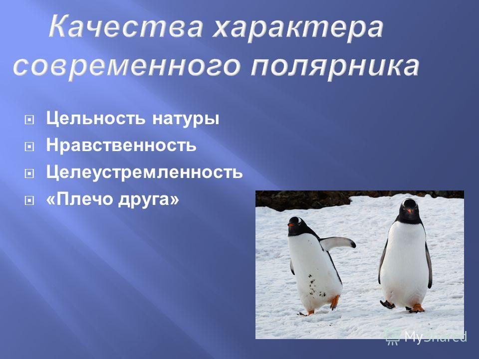 Качества характера современного полярника Цельность натуры Нравственность Целеустремленность «Плечо друга»