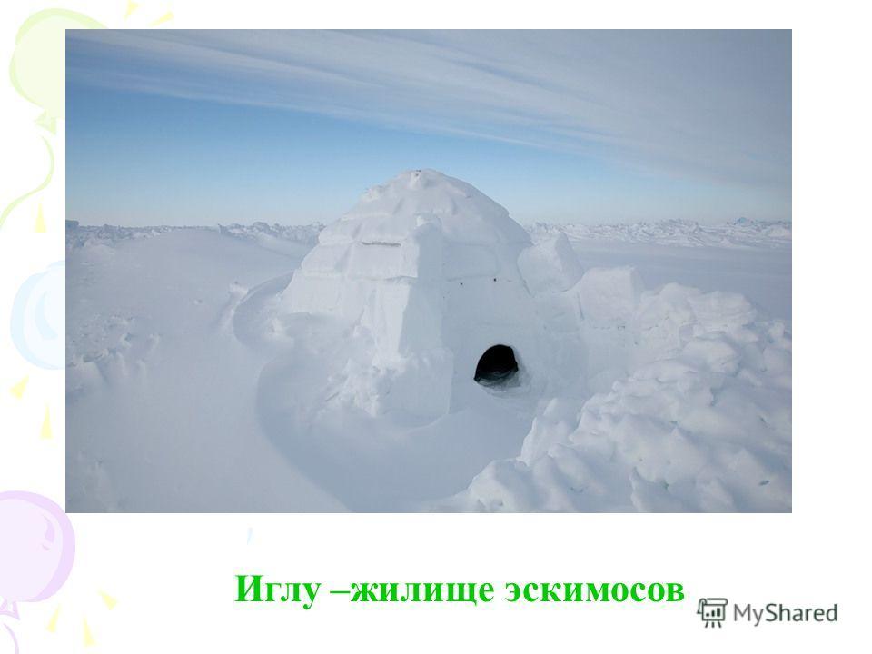 Иглу –жилище эскимосов