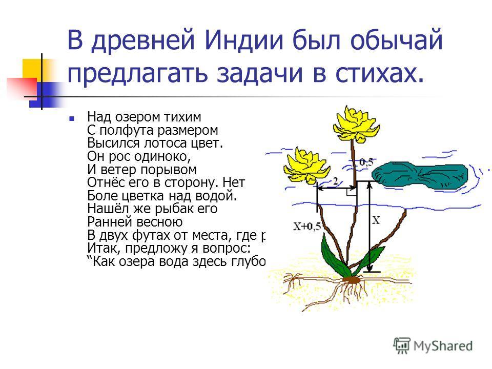 В древней Индии был обычай предлагать задачи в стихах. Над озером тихим С полфута размером Высился лотоса цвет. Он рос одиноко, И ветер порывом Отнёс его в сторону. Нет Боле цветка над водой. Нашёл же рыбак его Ранней весною В двух футах от места, гд