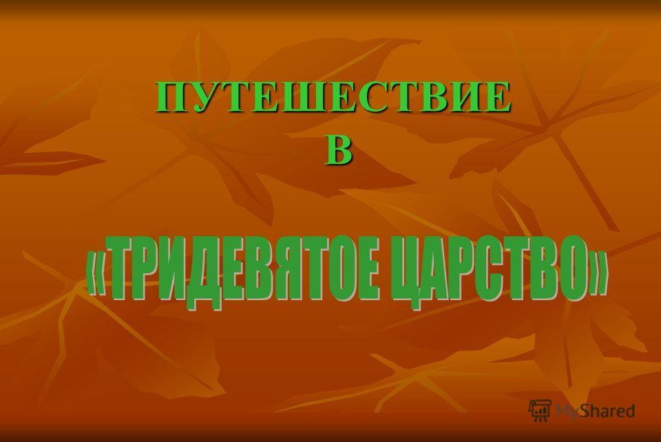ПУТЕШЕСТВИЕ В