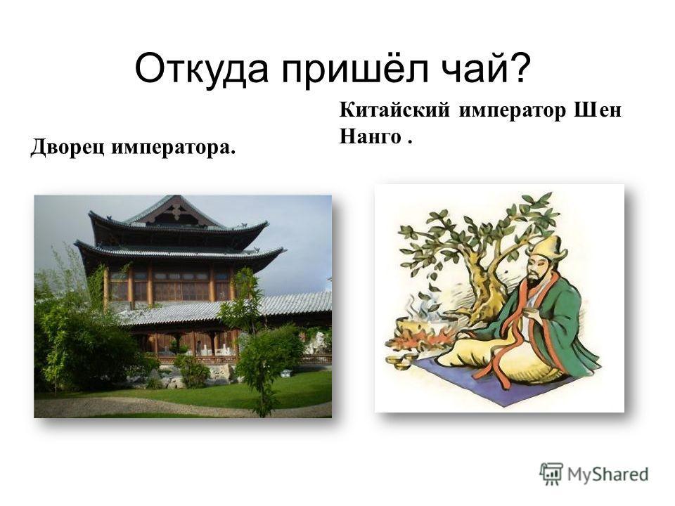 Откуда пришёл чай ? Дворец императора. Китайский император Шен Нанго.
