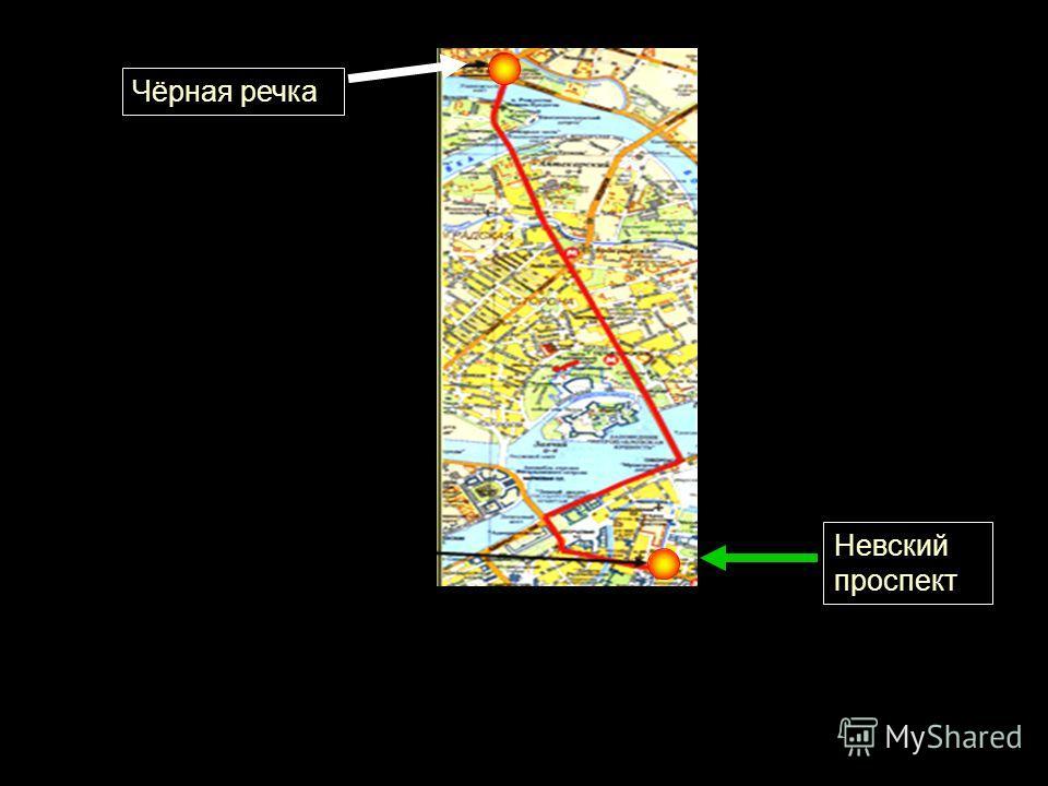 Чёрная речка Невский проспект
