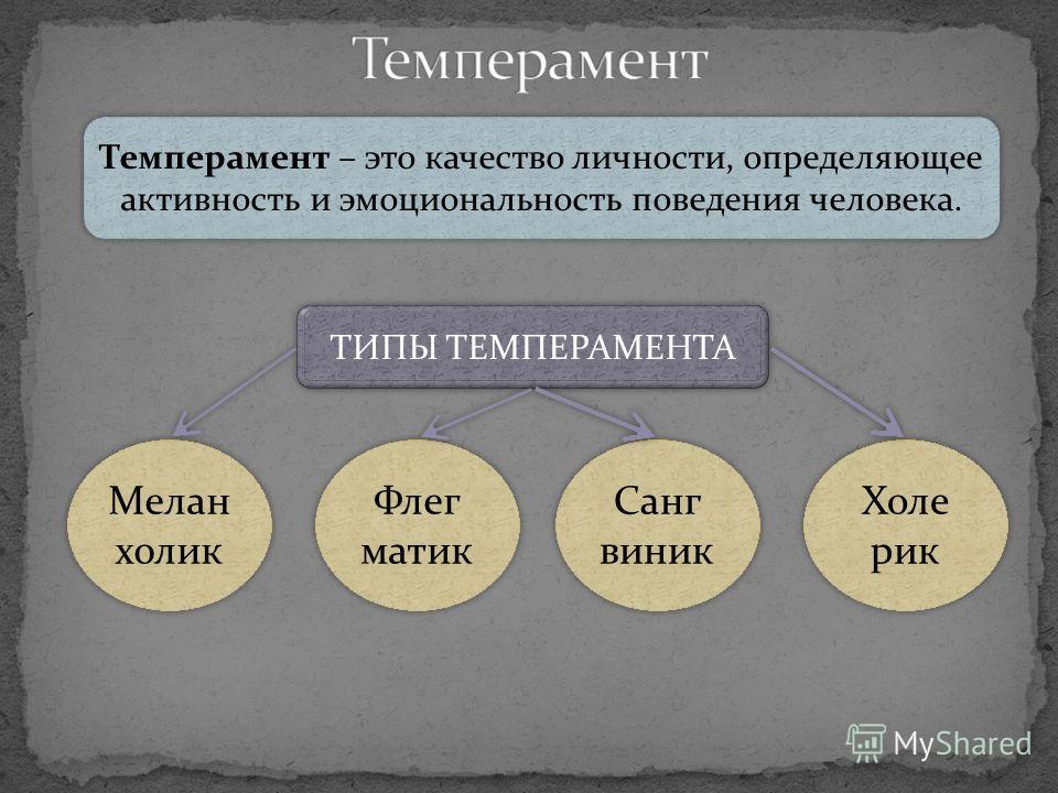 Темперамент – это качество личности, определяющее активность и эмоциональность поведения человека. ТИПЫ ТЕМПЕРАМЕНТА Мелан холик Флег матик Санг виник Холе рик
