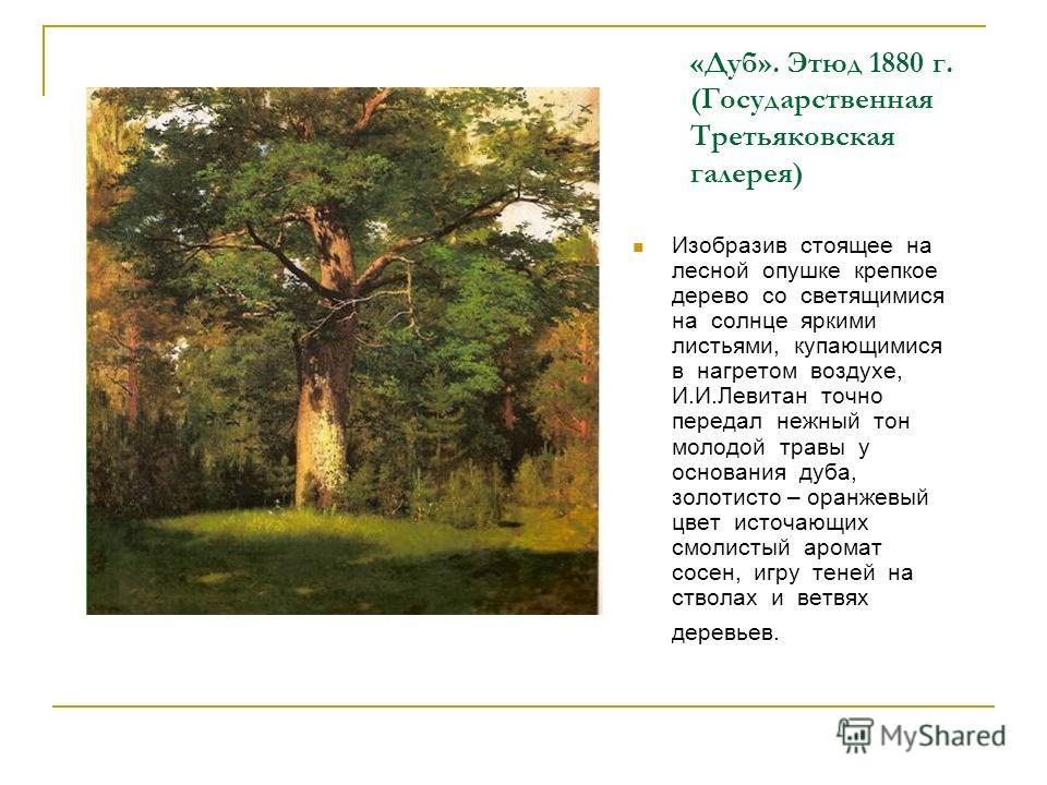 «Дуб». Этюд 1880 г. (Государственная Третьяковская галерея) Изобразив стоящее на лесной опушке крепкое дерево со светящимися на солнце яркими листьями, купающимися в нагретом воздухе, И.И.Левитан точно передал нежный тон молодой травы у основания дуб