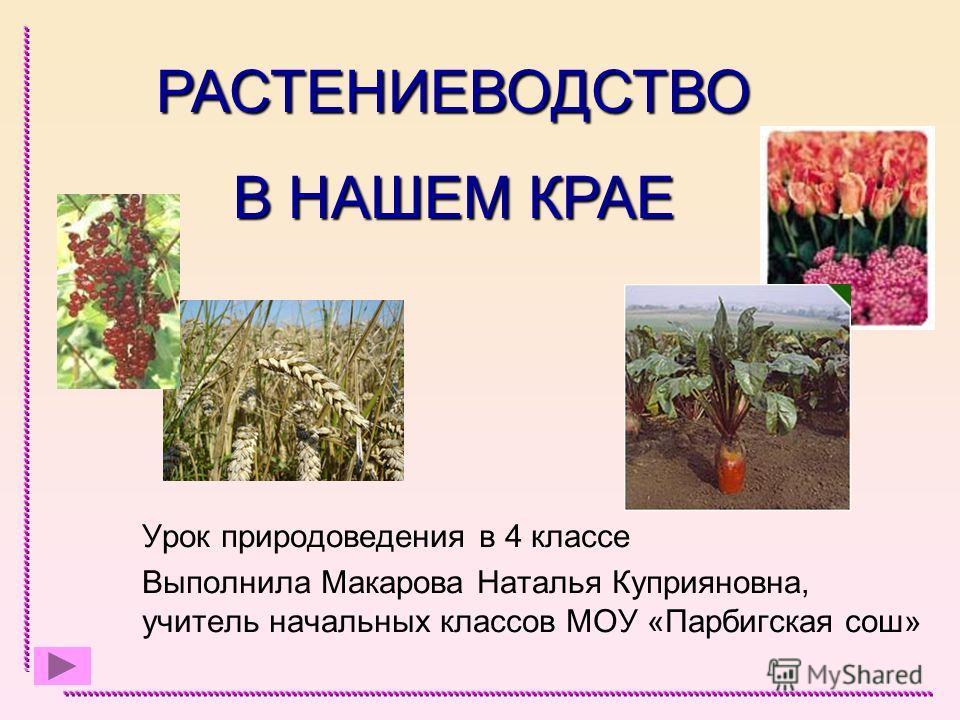 Урок природоведения в 4 классе Выполнила Макарова Наталья Куприяновна, учитель начальных классов МОУ «Парбигская сош» РАСТЕНИЕВОДСТВО В НАШЕМ КРАЕ