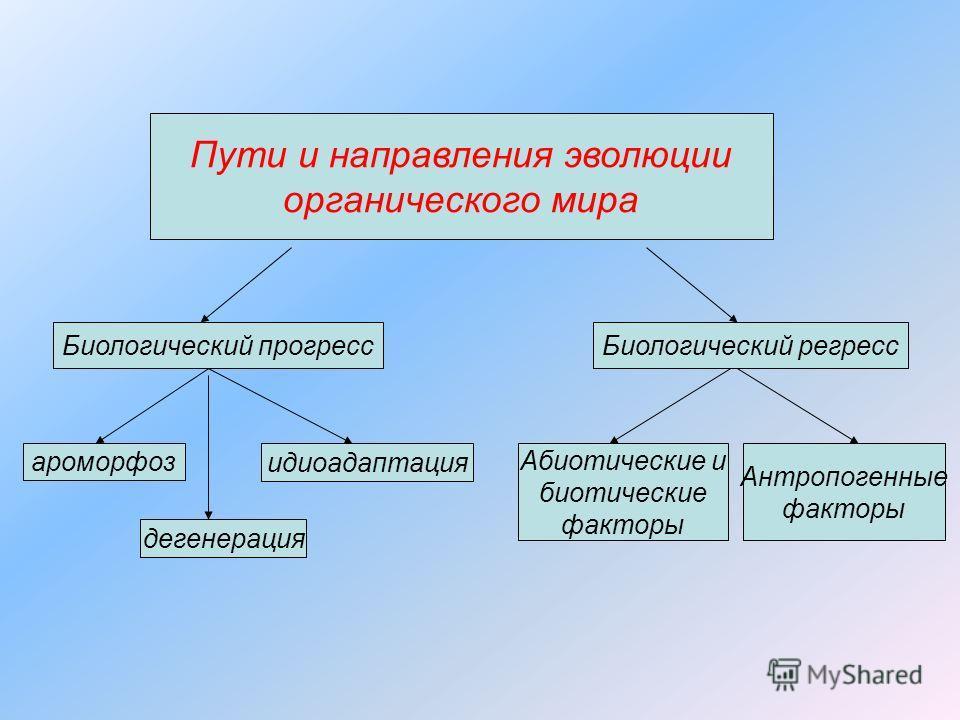 Пути и направления эволюции органического мира Биологический прогресс ароморфоз дегенерация идиоадаптация Абиотические и биотические факторы Антропогенные факторы Биологический регресс