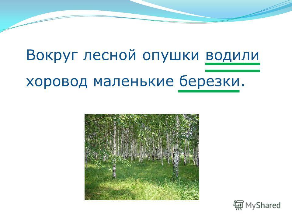 Вокруг лесной опушки водили хоровод маленькие березки.