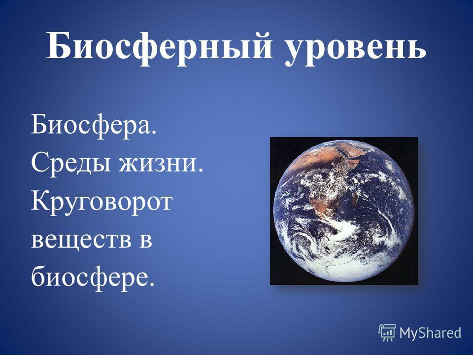 Биосферный уровень Биосфера. Среды жизни. Круговорот веществ в биосфере.