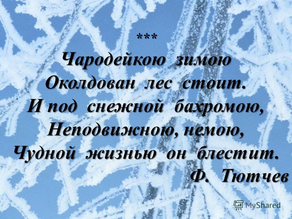 *** Чародейкою зимою Околдован лес стоит. И под снежной бахромою, Неподвижною, немою, Чудной жизнью он блестит. Ф. Тютчев