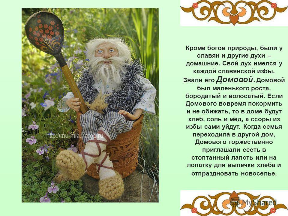 Кроме богов природы, были у славян и другие духи – домашние. Свой дух имелся у каждой славянской избы. Звали его Домовой. Домовой был маленького роста, бородатый и волосатый. Если Домового вовремя покормить и не обижать, то в доме будут хлеб, соль и