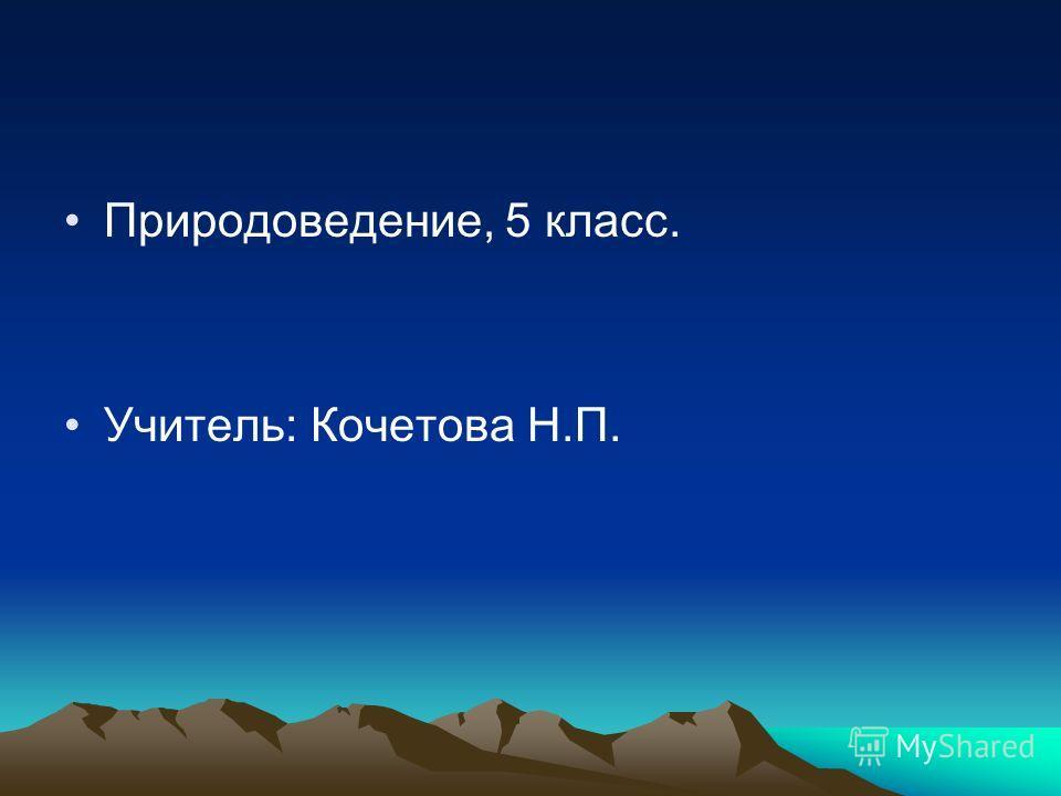 Природоведение, 5 класс. Учитель: Кочетова Н.П.