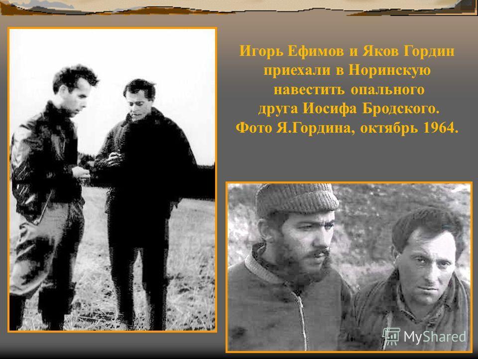 Игорь Ефимов и Яков Гордин приехали в Норинскую навестить опального друга Иосифа Бродского. Фото Я.Гордина, октябрь 1964.