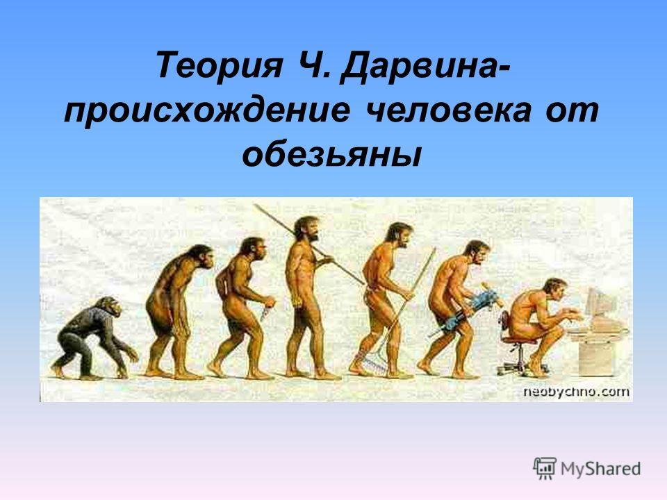 Теория Ч. Дарвина- происхождение человека от обезьяны