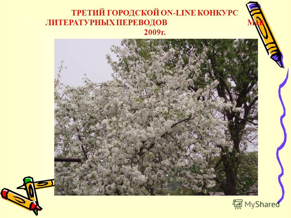 ТРЕТИЙ ГОРОДСКОЙ ON-LINE КОНКУРС ЛИТЕРАТУРНЫХ ПЕРЕВОДОВ Май 2009г.