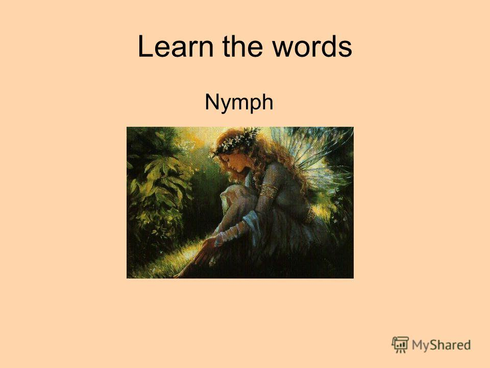 Learn the words Nymph