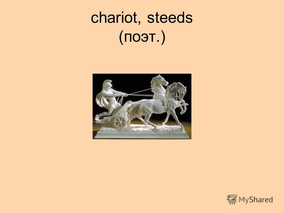 chariot, steeds (поэт.)