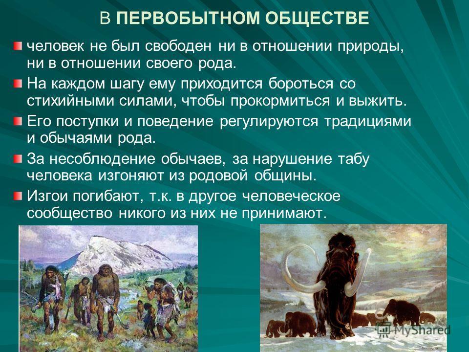 Какие концепции отношения общества к природе