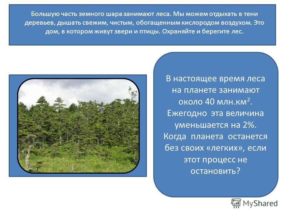 Большую часть земного шара занимают леса. Мы можем отдыхать в тени деревьев, дышать свежим, чистым, обогащенным кислородом воздухом. Это дом, в котором живут звери и птицы. Охраняйте и берегите лес. В настоящее время леса на планете занимают около 40