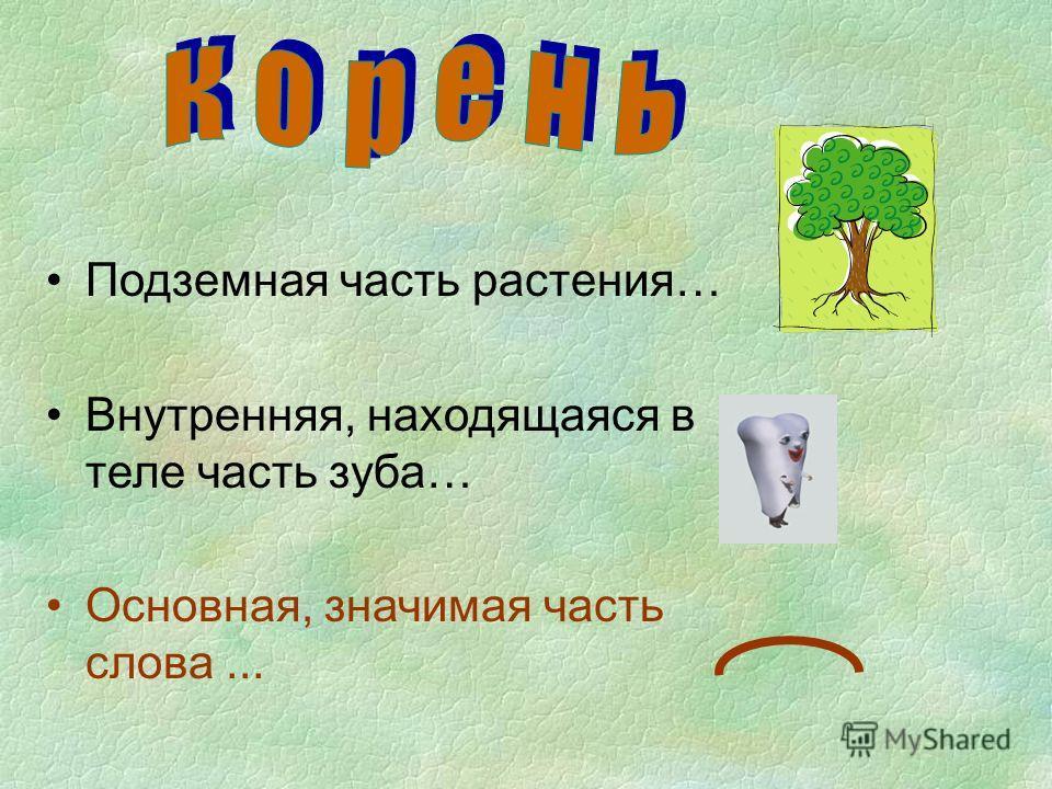 Подземная часть растения… Внутренняя, находящаяся в теле часть зуба… Основная, значимая часть слова...