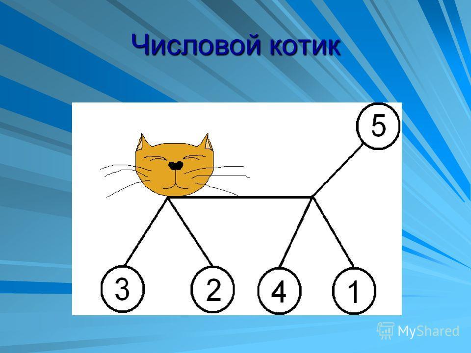 Числовой котик