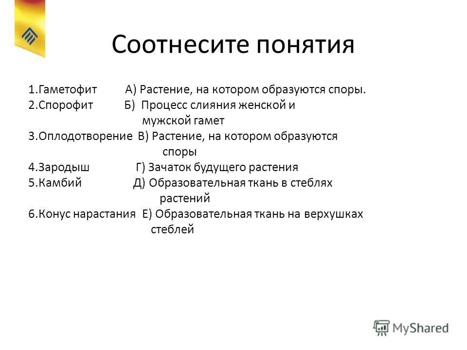 Соотнесите понятия 1.Гаметофит А) Растение, на котором образуются споры. 2.Спорофит Б) Процесс слияния женской и мужской гамет 3.Оплодотворение В) Растение, на котором образуются споры 4.Зародыш Г) Зачаток будущего растения 5.Камбий Д) Образовательна