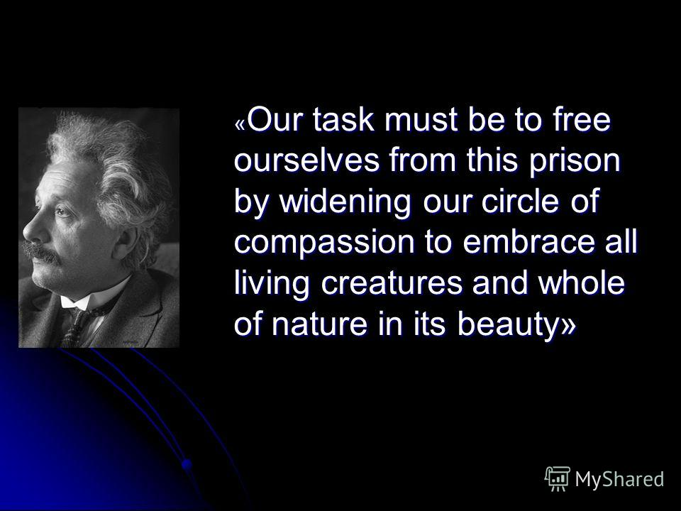 « Our task must be to free ourselves from this prison by widening our circle of compassion to embrace all living creatures and whole of nature in its beauty»