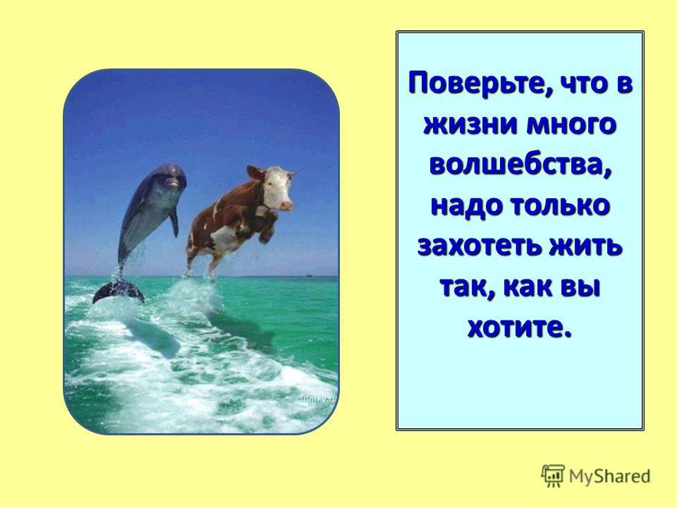 Поверьте, что в жизни много волшебства, надо только захотеть жить так, как вы хотите.