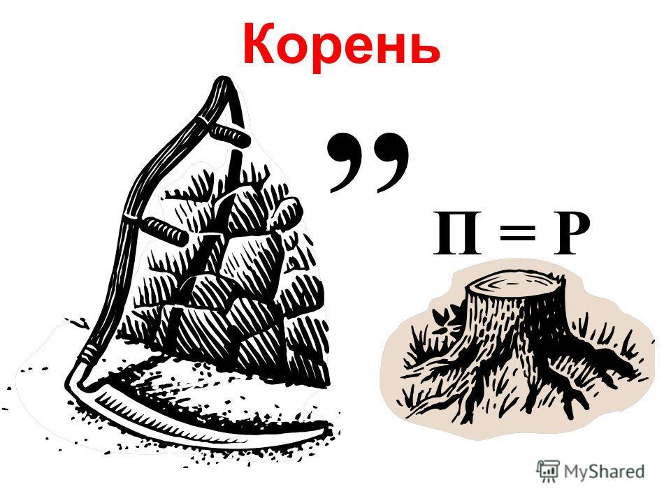Корень,, П = Р