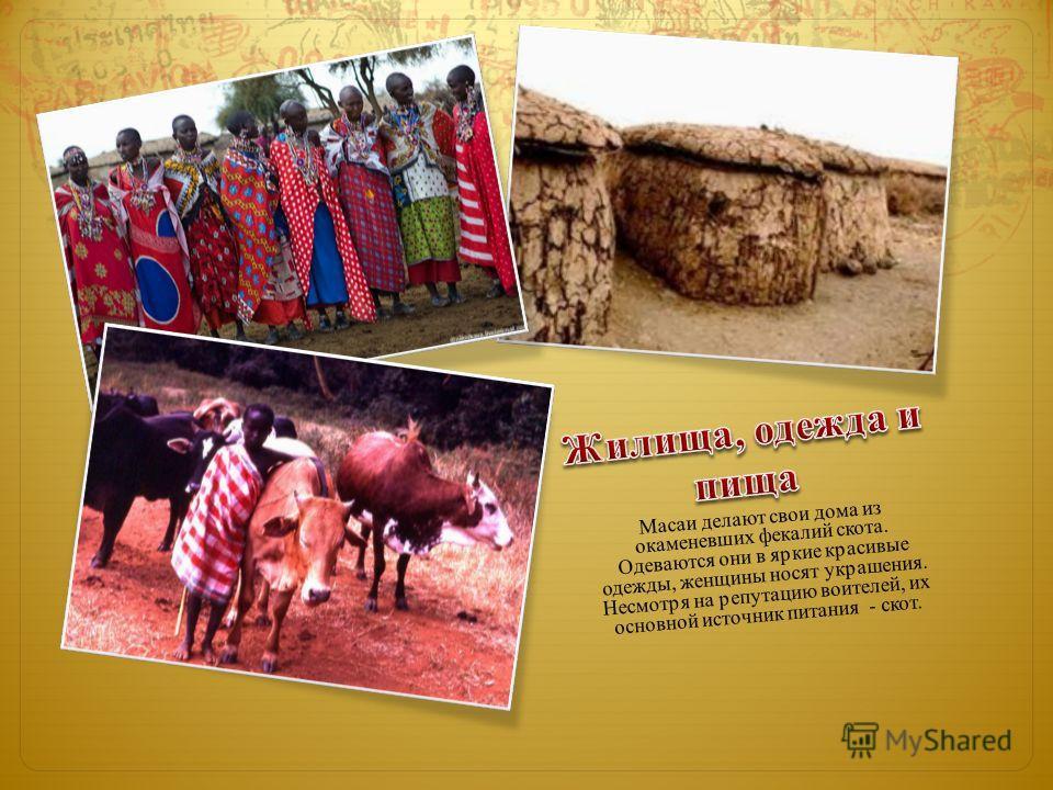 Масаи делают свои дома из окаменевших фекалий скота. Одеваются они в яркие красивые одежды, женщины носят украшения. Несмотря на репутацию воителей, их основной источник питания - скот.