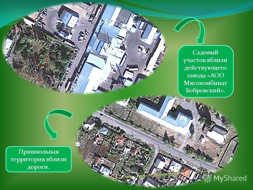 Садовый участок вблизи действующего завода «АОО Мясокомбинат Бобровский». Пришкольная территория вблизи дороги.