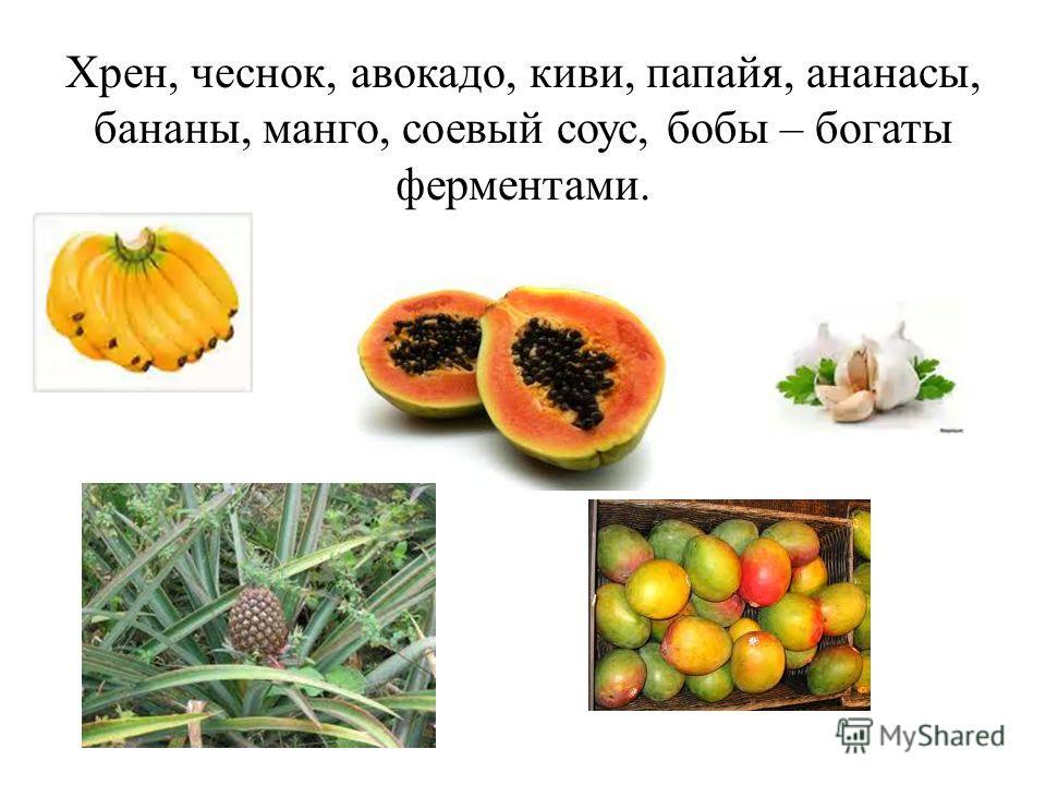 Хрен, чеснок, авокадо, киви, папайя, ананасы, бананы, манго, соевый соус, бобы – богаты ферментами.