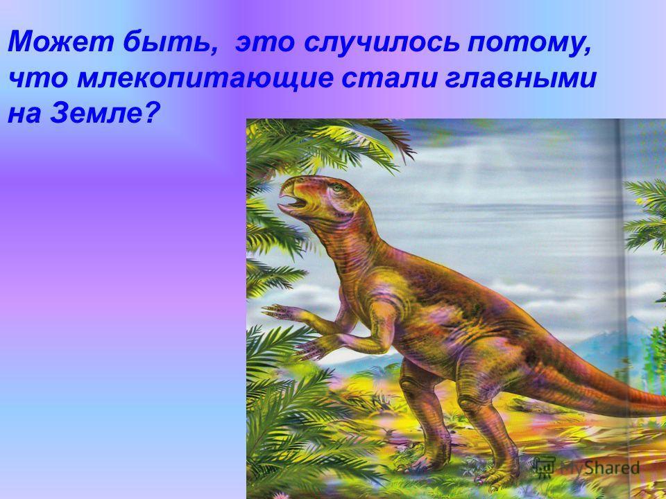 Может быть, это случилось потому, что млекопитающие стали главными на Земле?